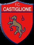 logo castiglione-w300-h300